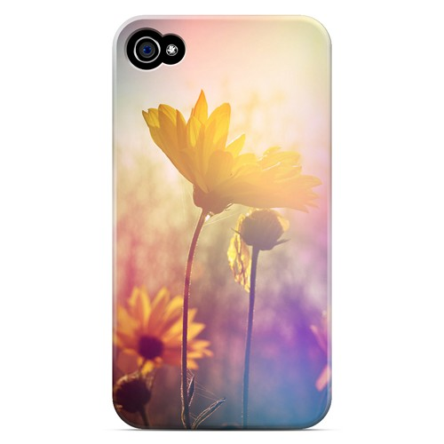 Colorful Daisy Bloom - Geeks Designer Line Spring Series Matte Case for Apple iPhone 4/4S