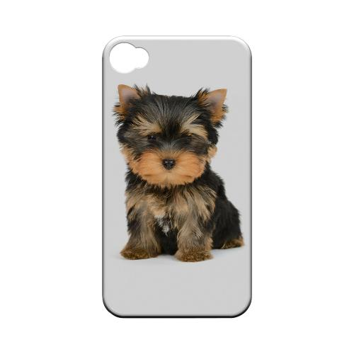 Yorkie Geeks Designer Line Puppy Series Matte Hard Case for Apple iPhone 4/4S