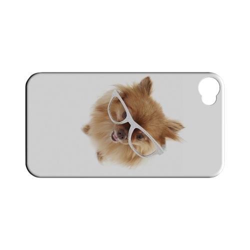 Pomeranian Geeks Designer Line Puppy Series Matte Hard Case for Apple iPhone 4/4S