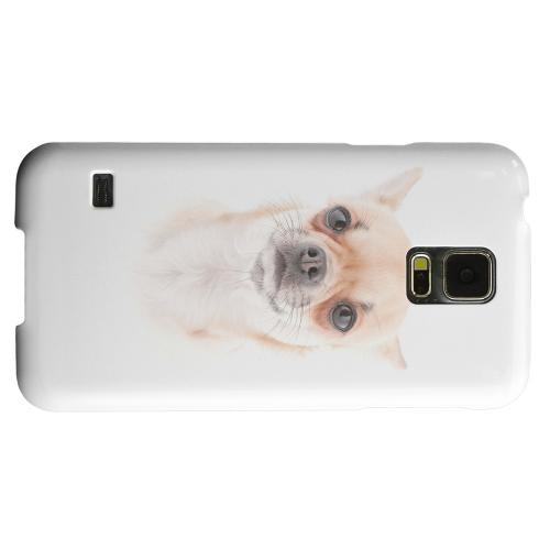 Geeks Designer Line (GDL) Samsung Galaxy S5 Matte Hard Back Cover - Chihuahua