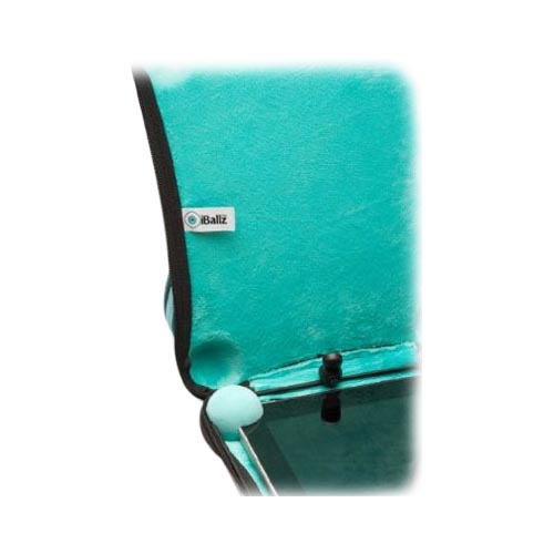 iBallz™ Apple iPad Hard Case w/ Hand Strap