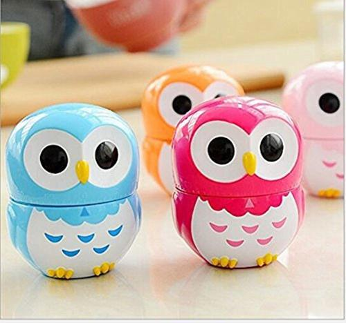 Lovely Blue Owl Kitchen Cooking Timer Alarm